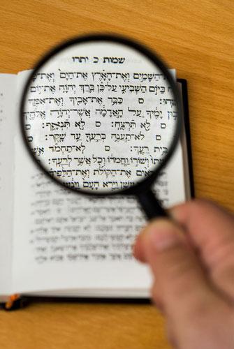 torah-study-magnified
