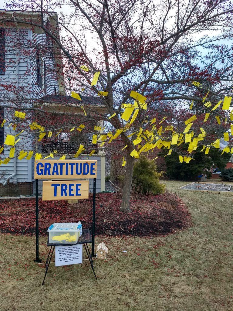 Around the neighborhood - The Gratitude Tree